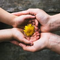 Systemische Meditation mit den Eltern für mehr Glück, Kraft und inneren Frieden