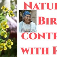 Natural Birth Control with Rue by Shaman Dr. Efigenia Barrientos
